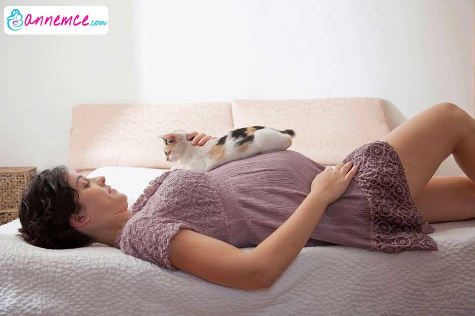 Hamilelikte Evcil Hayvan (Kedi, Köpek gibi) Beslemek Zararlı Mı?