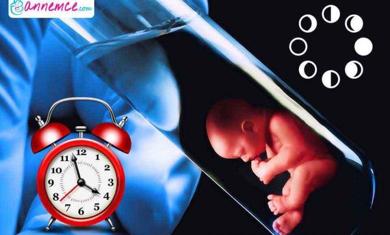 Tüp Bebek Nasıl Olur? Tüp Bebek Nasıl Yapılır?