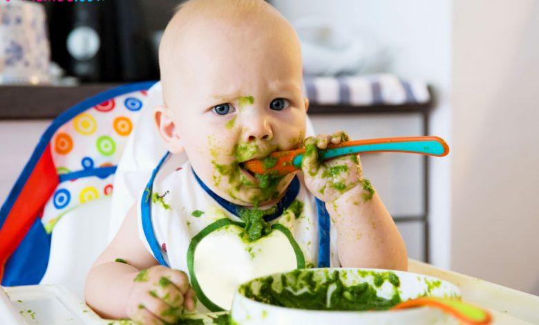 Bebeklerde Ek Gıdaya Nasıl Başlanır?